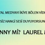 Yanny mi Laurel mi