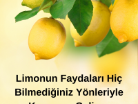 Limonun Faydaları Hiç Bilmediğiniz Yönleriyle Karşınıza Geliyor