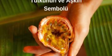 Çarkıfelek Meyvesi Tutkunun ve Aşkın Sembolü